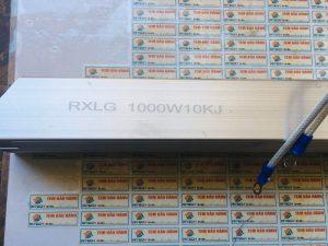RXLG 1000W100KJ